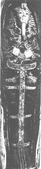 Tut's Coffin